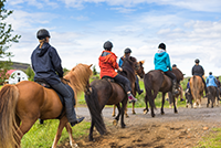 Horseback Riding Summer Silverthorne
