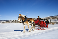 Sleigh Rides Copper Mountain Winter