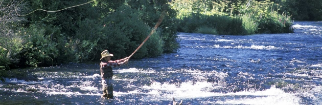 fly fishing colorado rocky mountains